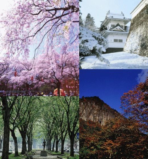 The 4 seasons in Japan - Beautiful