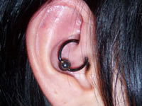 Close up of a daith piercing