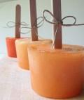 Cantaloupe Popsicles - a Healthy Seasonal Recipe