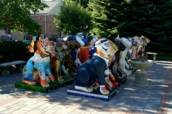 Birmingham, Michigan, Tigers
