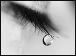What do tears say?