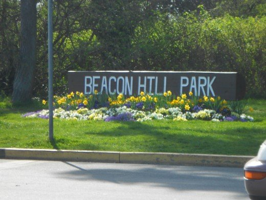 Beacon Hill offers play parks for children, a petting zoo and beautiful landscaped and natural habitat for flowers, trees and plants.