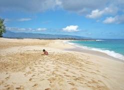 Northshore Hawaii