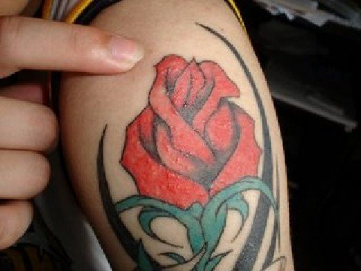 Tattoo My Brain - Over 6000 Tattoo Designs.