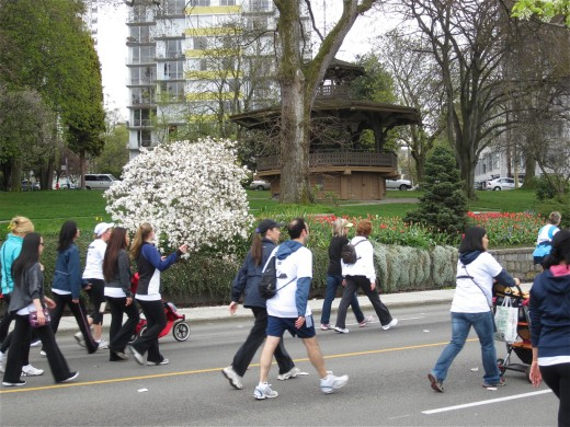 Interesting scenery beside the Vancouver Sun Run route