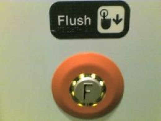 There's even a button for flushing the toilet.