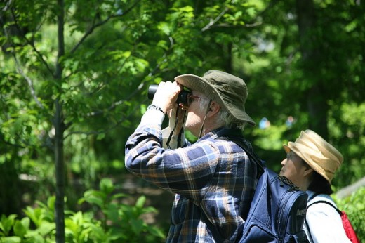 Birdwatchers gain pleasure from simply watching birds, regardless of whether they are rare or common. Believe it or not, this man is birdwatching in Central Park, New York.
