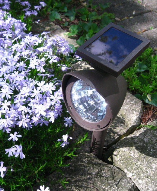 Solar powered spotlights are an excellent choice for outdoor lighting.