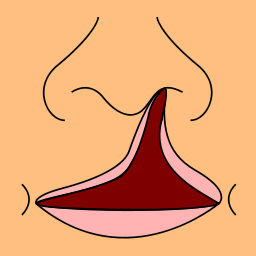 Diagram to show the devastation of  a cleft lip