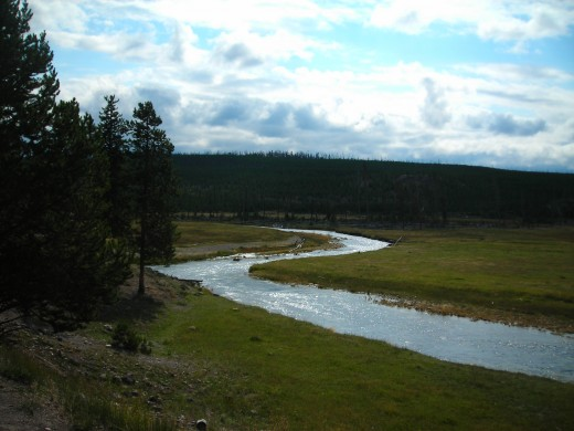 The wonder of Nature: The Yellowstone River