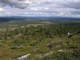 Hedmark in S.E. Norway, heathland as the name suggests
