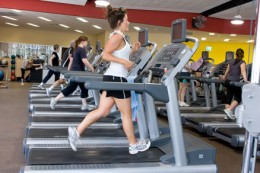 Health Clubs & Gyms offer a great range of exercise and work out programs