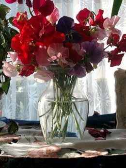 The scent of  an English summer- sweet peas in a vase