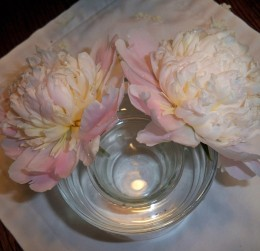 Peony stems are placed between the containers with peonies resting on the edge of the larger one.