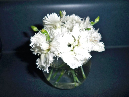 This votive has 10 tiny carnations (about the size of small dianthus) with a few green buds tucked among them.