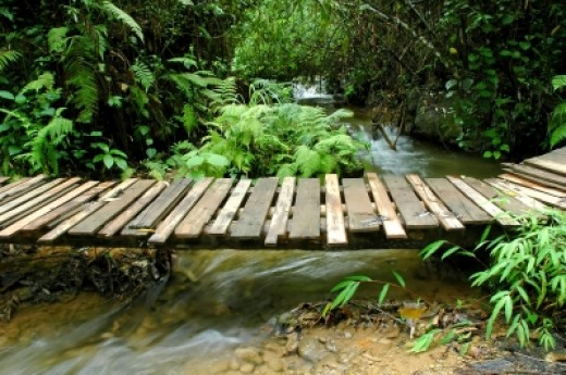 A bridge over a stream may mean you are making an emotional transition.  Are you attempting to avoid your feelings or are you overcoming an emotional issue?