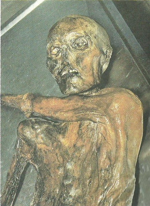 The Ice Man - Oldest Mummified Human