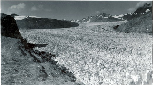 Muir Glacier in 1940, Glacier Bay National Park, Alaska. It covered much of the bay.