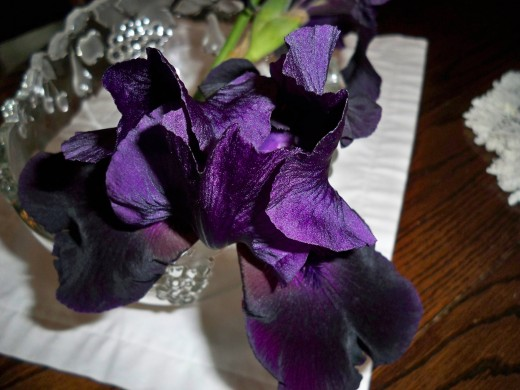 Luxury Flows From Black Iris Color And Form.