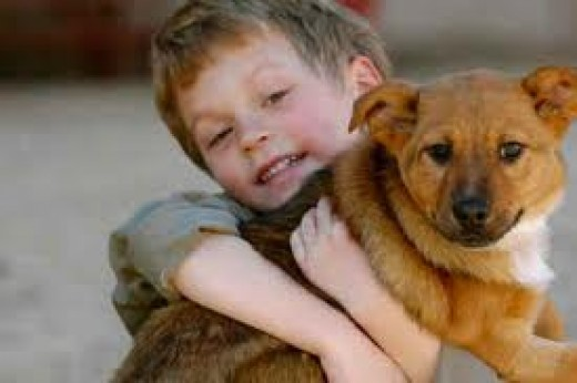 do we really love our animals What god says about unconditional love david merck unless otherwise indicated we need to extend this love to everyone who comes into our church (4) how do we respond to such sweeping pronouncements by christians as with any issue.