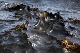 During the 2010 Oil Spill
