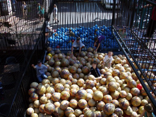 Photo 7 - Huge Ball Pit - The kids had so much fun here!