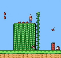 Mario holding a red potion that reveals a hidden door,