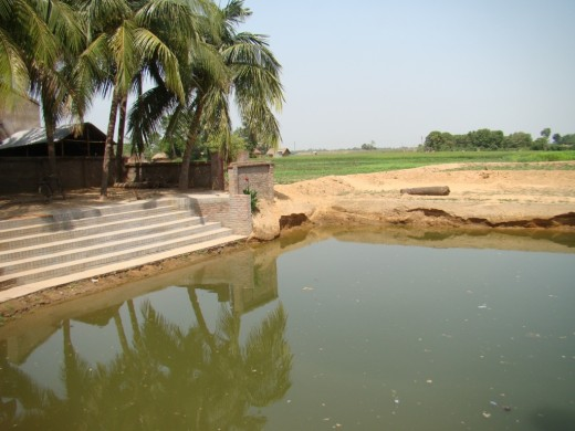 The sacred pond near Bari Masjid