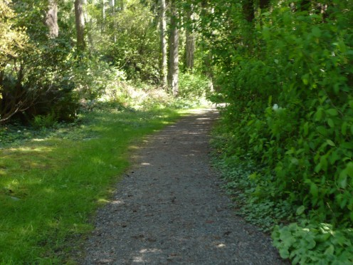 Nature surrounds us on Rolston Trail.