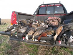 Sport and Commercial Hunting – Animal hunting ethics