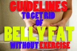 Guidelines to get rid of Belly Fat Without Exercise Fast