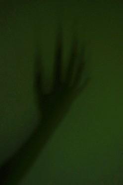 Shadow Beings, Paranormal Entities