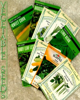 "Seeds come in a variety of brands. I like to use ""Burpee"", ""Renee's Garden"", or ""Cornucopia"" brand seeds."