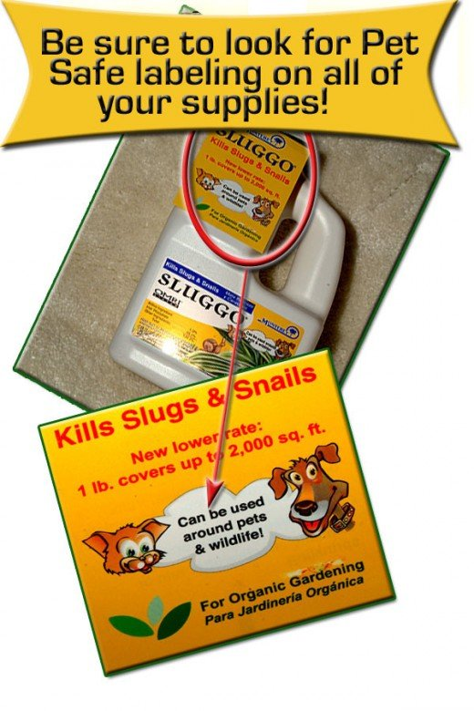 Snail bait can be very bad for pets, so make sure to buy only the kind that has pet safety labeling!