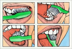 Cover all the tooth surfaces