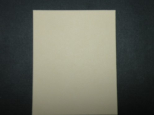 smaller piece of scrapbook cardstock cut to fit