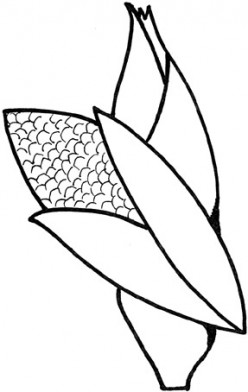 Best Unique Thanksgiving Coloring Pages For America