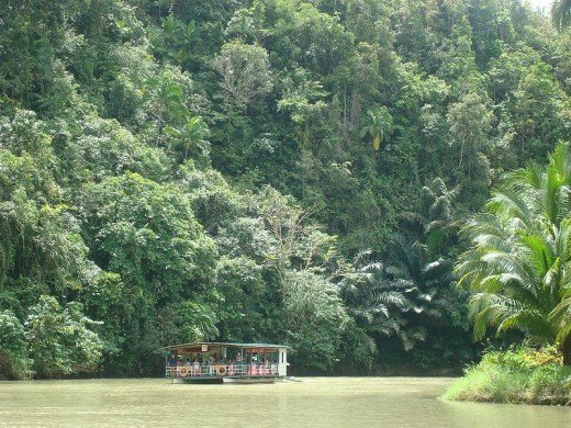 River cruise on the Loboc River (Photo by ericlucky290, February 23, 2008)