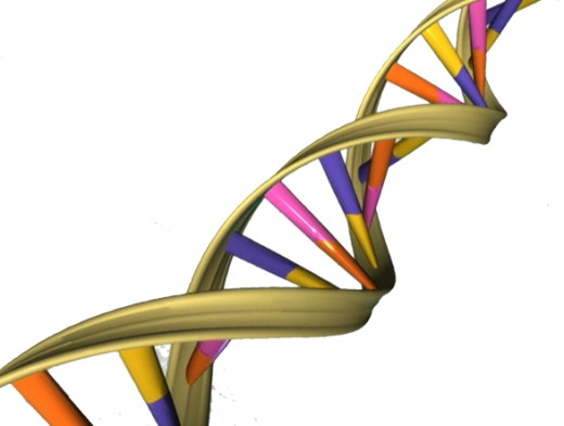 Molecular Biology is concerned with DNA and other biologically active molecules.
