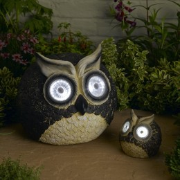 Solar Owls
