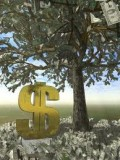 Money Grows on tress