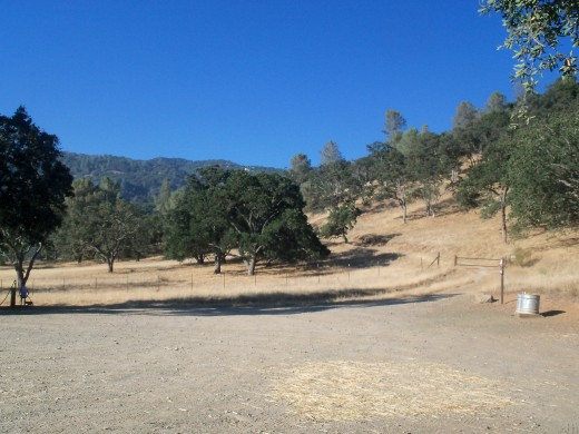 Area for lounging and a trail up the hill towards Sunol Ohlone Park