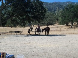 A view from our camp site to the wash station