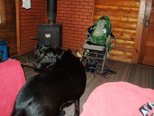 Lochsa Lodge in Powell, ID allows pets to stay in some of its more primitive cabins