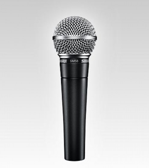 Dynamic Microphone: (Shure SM58; one of many brands and varieties)