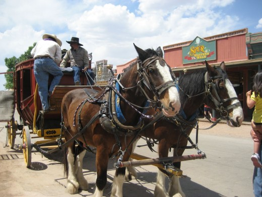 Stagecoach and horses in Tombstone, AZ