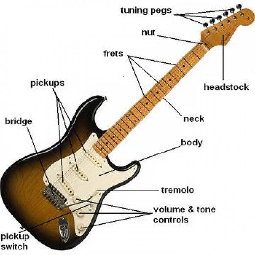 Parts of Your Guitar