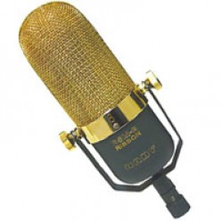 Ribbon Microphone: (Nady RSM 2; one of many brands and varieties)