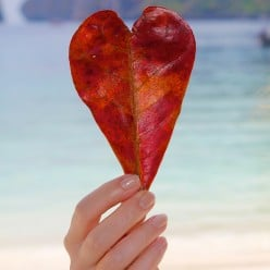 Love life - romantic poem