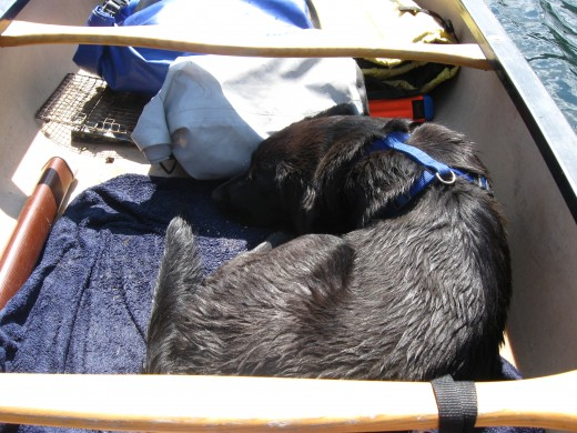 Even something as simple as a wet towel on the bottom of the boat can provide sure footing and a cool place to rest